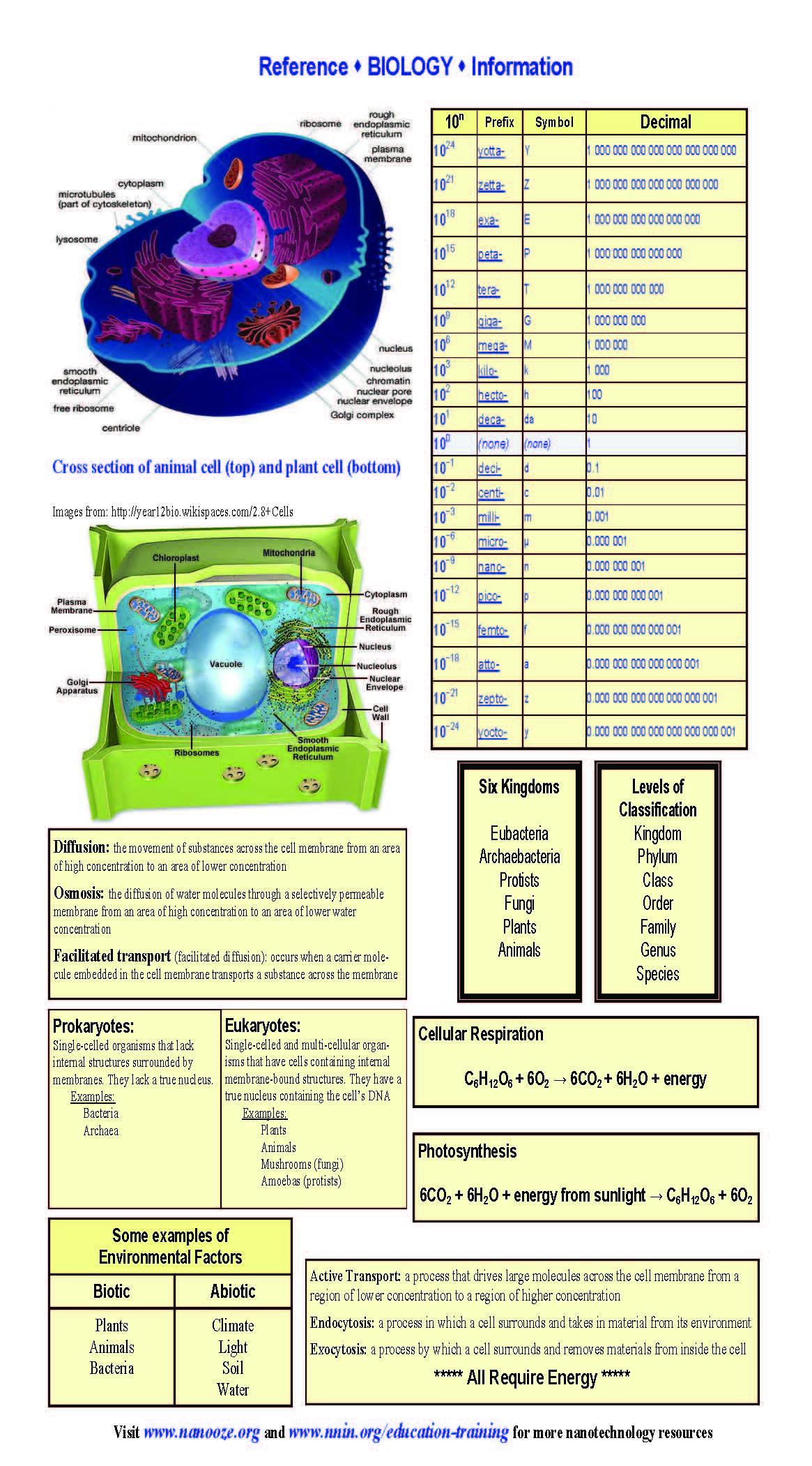 biology reference sheets national nanotechnology infrastructure